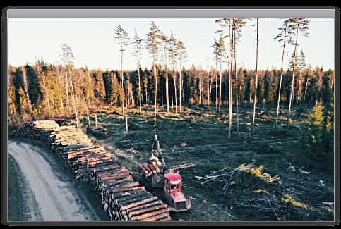SBP Sustainable Biomass Program – (Ilgtspējīgas Biomasas Sertifikācija)
